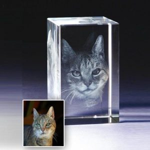 Pet 3D Photo Crystal