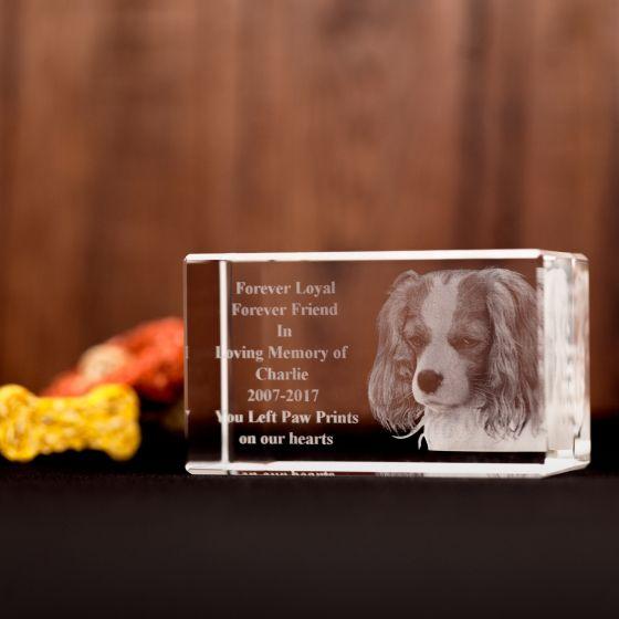 Pet Memorial 3D Laser Engraved Photo Crystal