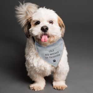 Personalised Dog Bandana