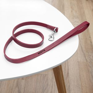 Personalised Classic Red Leather Dog Lead
